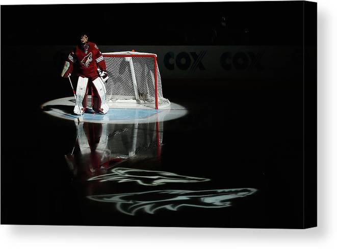 People Canvas Print featuring the photograph Detroit Red Wings V Arizona Coyotes by Christian Petersen