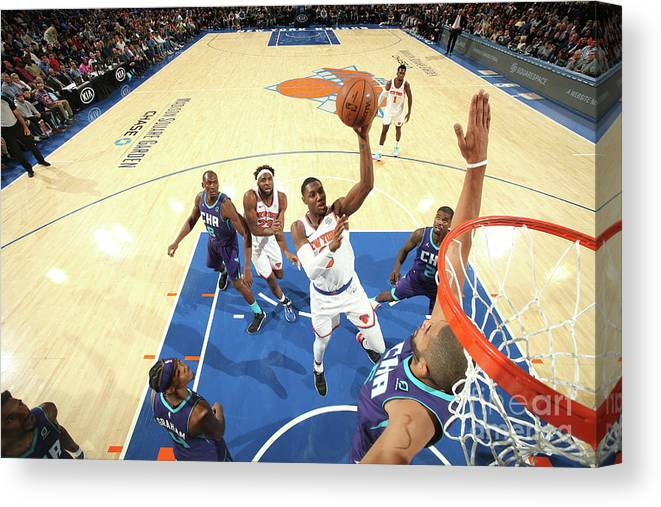 Nba Pro Basketball Canvas Print featuring the photograph Charlotte Hornets V New York Knicks by Nathaniel S. Butler