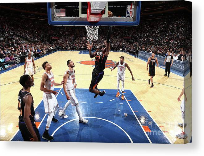 Nba Pro Basketball Canvas Print featuring the photograph Phoenix Suns V New York Knicks by Nathaniel S. Butler