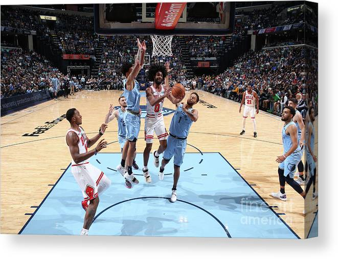Coby White Canvas Print featuring the photograph Chicago Bulls V Memphis Grizzlies by Joe Murphy
