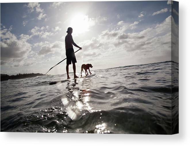 Pets Canvas Print featuring the photograph A Man And His Dog On A Stand Up Paddle by Noel Hendrickson