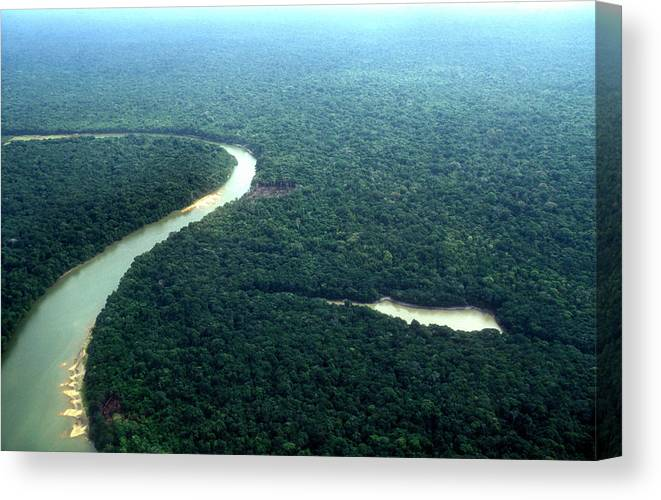 Tropical Rainforest Canvas Print featuring the photograph Amazon Planet by Am29
