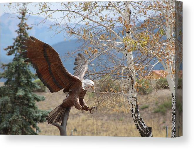 Eagle Canvas Print featuring the photograph American Eagle in Autumn by Colleen Cornelius
