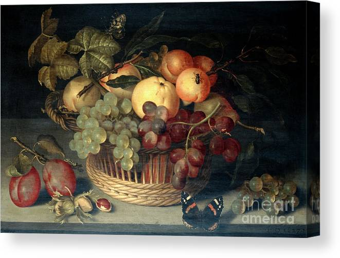 Plum Canvas Print featuring the drawing Basket Of Fruit And Admiral Butterfly by Print Collector
