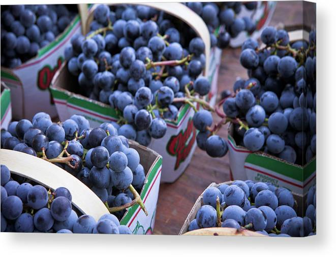 Toronto Canvas Print featuring the photograph Baskets Of Grapes by Mary Smyth