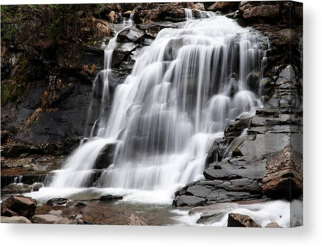 Waterfall Canvas Print featuring the photograph Bastion Falls by Tom Romeo
