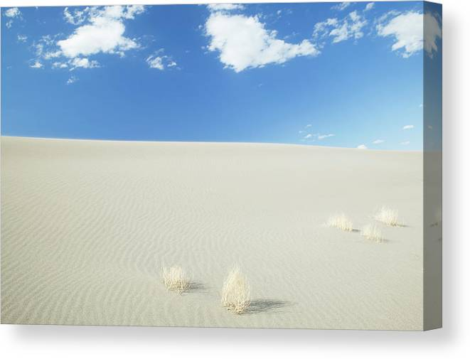 Sand Dune Canvas Print featuring the photograph Blue Sky Over Sand Dune by Bryan Mullennix