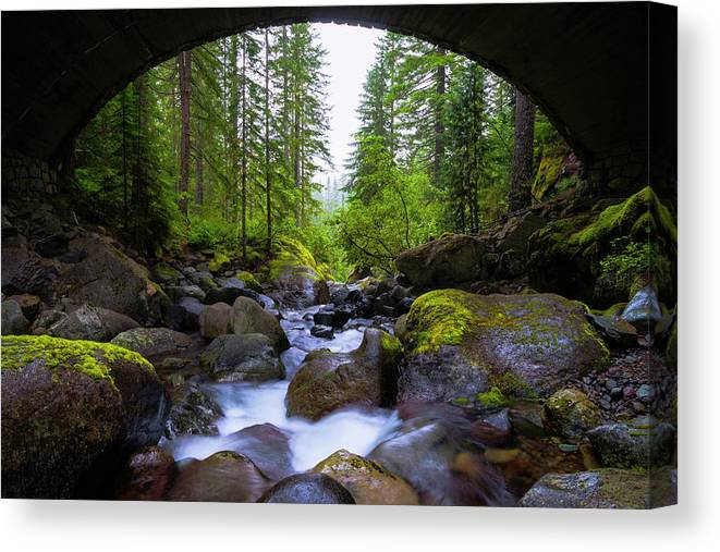 Bridge Below Rainier Canvas Print featuring the photograph Bridge Below Rainier by Chad Dutson