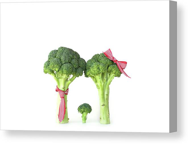 Broccoli Canvas Print featuring the photograph Broccoli Dad, Mom And Baby by Stephanie Mull Photography