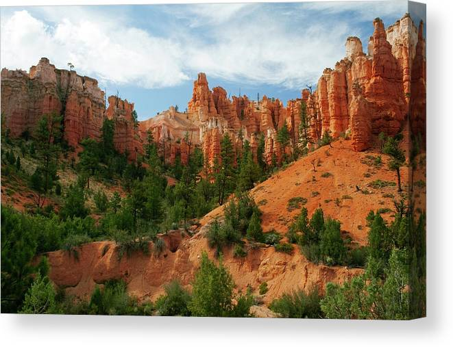 Scenics Canvas Print featuring the photograph Bryce Canyon by Wsfurlan
