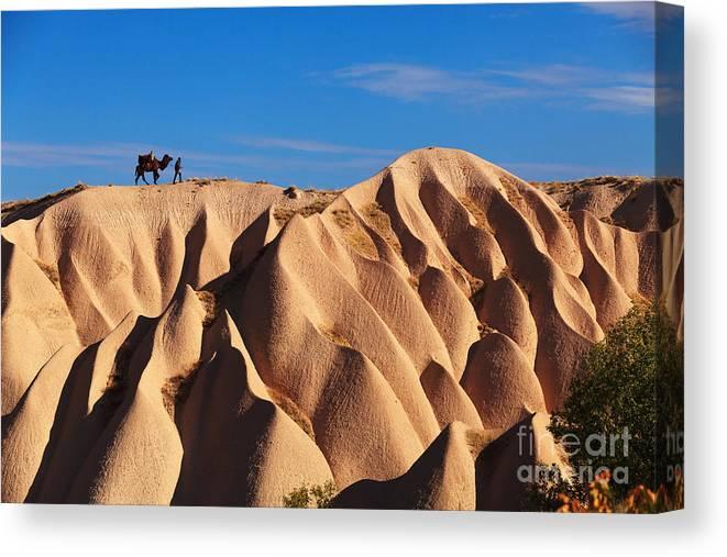 Kapadokya Canvas Print featuring the photograph Camel And The Cameleer On The Rock by Yavuz Sariyildiz