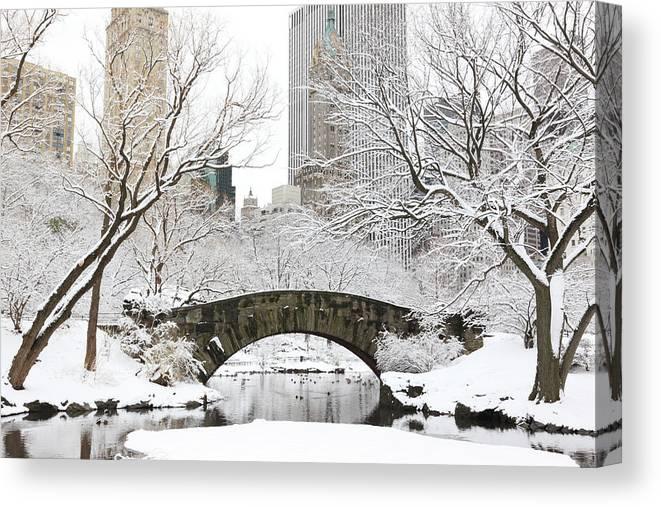 Snow Canvas Print featuring the photograph Central Park, New York by Veni