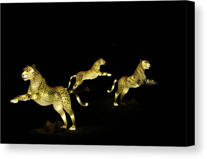 Cheetah Canvas Print featuring the photograph Christmas At The Living Desert Zoo - Cheetah Family by Colleen Cornelius