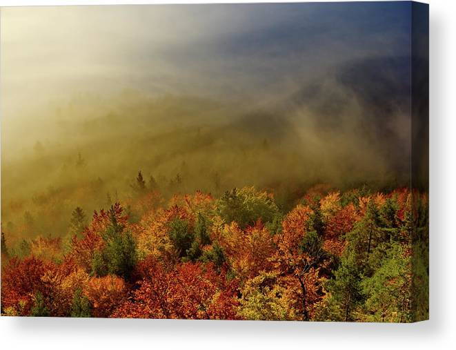 Romantic Canvas Print featuring the photograph Colours Of Autumn by Ren Kuljovska
