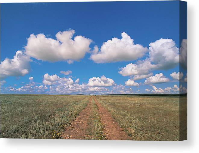 Grainy Canvas Print featuring the photograph Dirt Road On Prairie With Cumulus Sky by Mimotito