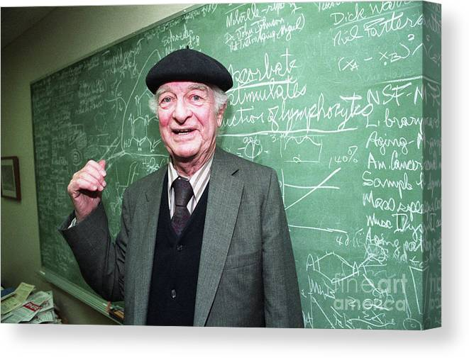 Working Canvas Print featuring the photograph Dr. Linus Pauling At The Chalk Board by Bettmann