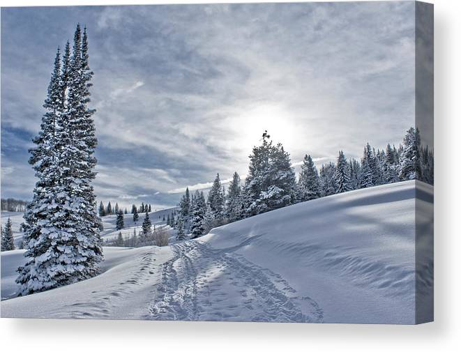 Shadow Canvas Print featuring the photograph Escape From Beaver Creek by Rauch Jonathan Photographies