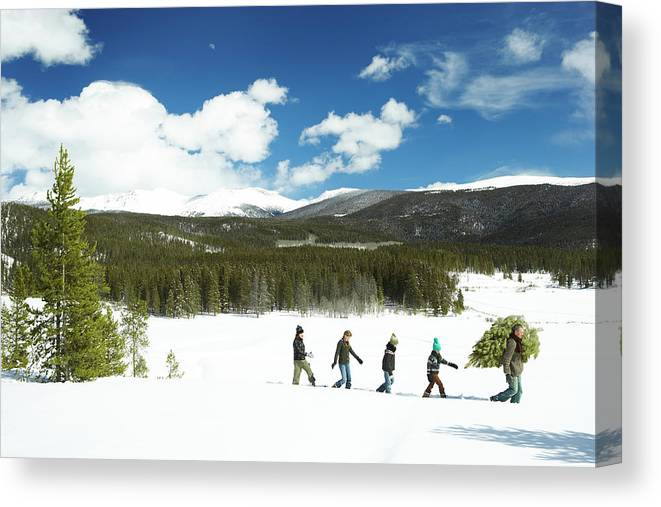 Three Quarter Length Canvas Print featuring the photograph Family Carrying Christmas Tree In Forest by Thomas Northcut