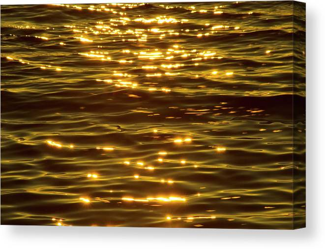 Bay Of Water Canvas Print featuring the photograph Gold Sea by Benl