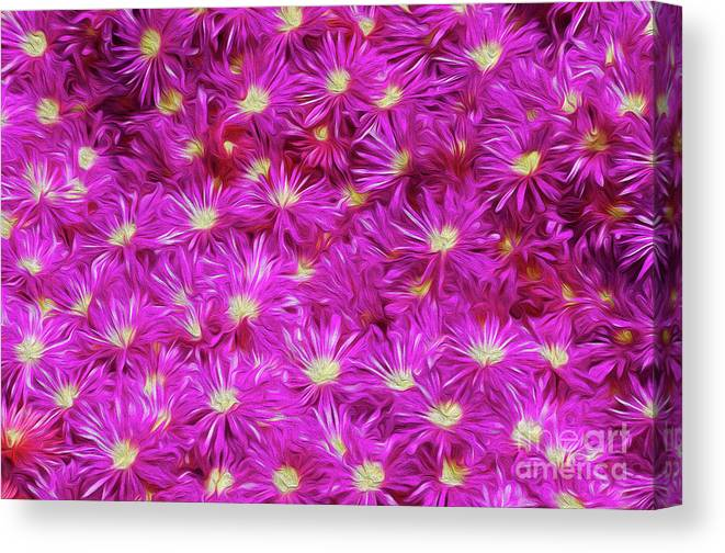 Flower Canvas Print featuring the digital art Hostile Takeover by Kenneth Montgomery
