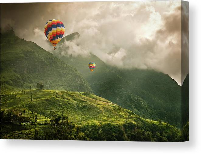 Tranquility Canvas Print featuring the photograph Hot Air Balloons Over Tea Plantations by Nicolo Sertorio