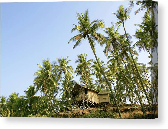 Scenics Canvas Print featuring the photograph India, Goa, Beach Huts On Palolem by Sydney James
