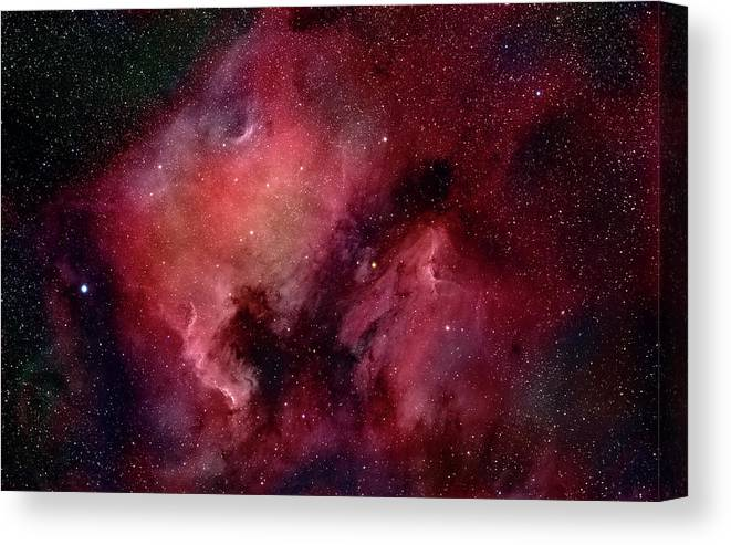 Majestic Canvas Print featuring the photograph Nebulae In Cygnus by Plefevre
