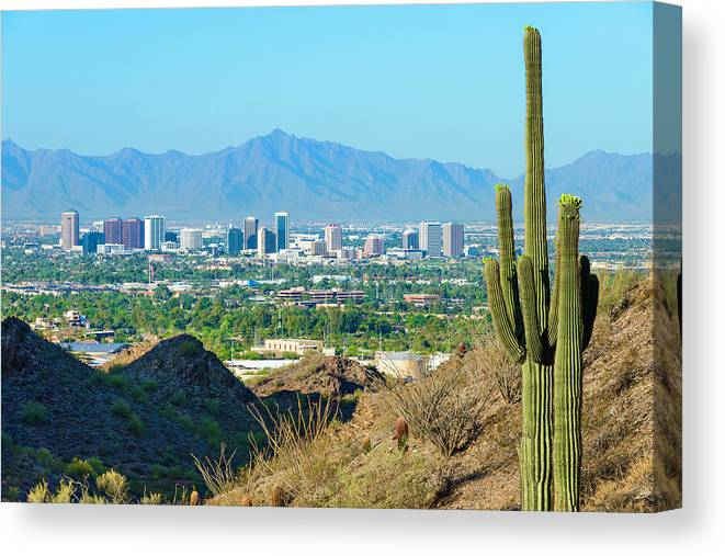 Saguaro Cactus Canvas Print featuring the photograph Phoenix Skyline Framed By Saguaro by Dszc