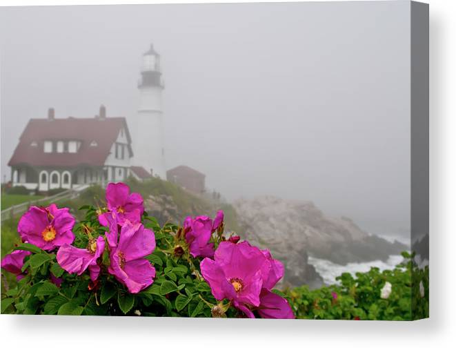 Built Structure Canvas Print featuring the photograph Portland Headlight With Rosa Rugosa And by Www.cfwphotography.com