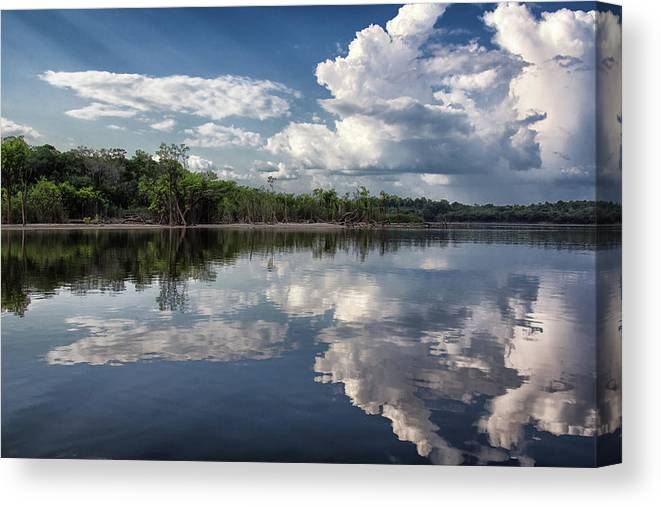 Scenics Canvas Print featuring the photograph Reflections In Amazon River by By Kim Schandorff