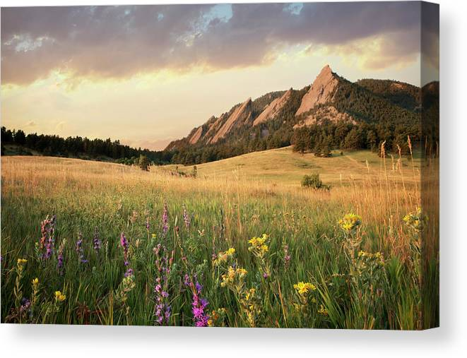 Tranquility Canvas Print featuring the photograph Scenic View Of Meadow And Mountains by Seth K. Hughes