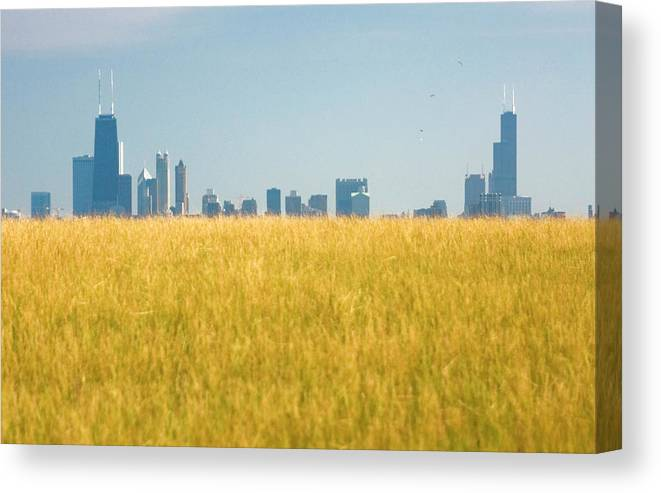 Grass Canvas Print featuring the photograph Skyscrapers Arising From Grass by By Ken Ilio