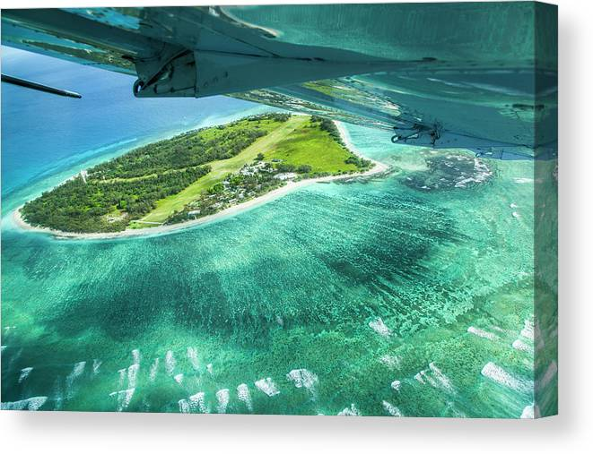 Grass Canvas Print featuring the photograph Taking Off From Great Barrier Reef by Nick