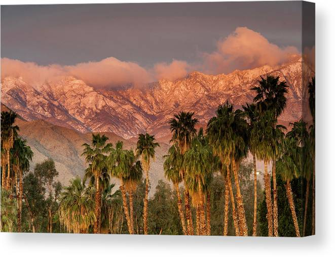 Scenics Canvas Print featuring the photograph The San Jacinto And Santa Rosa Mountain by Danita Delimont