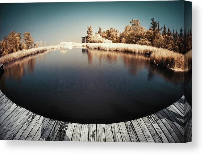 Tranquility Canvas Print featuring the photograph Trees And Plants In A Pond by D3sign