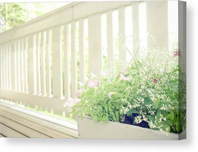 Outdoors Canvas Print featuring the photograph White Fence And Flowers by Photographer Mikael Nyberg