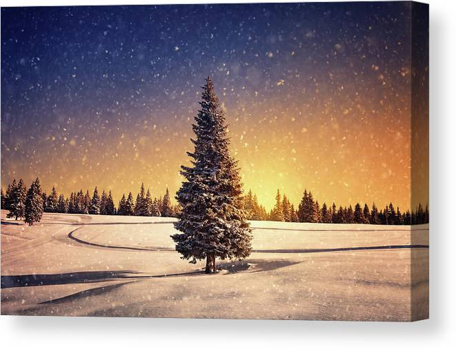 Scenics Canvas Print featuring the photograph Winter Sunset by Borchee