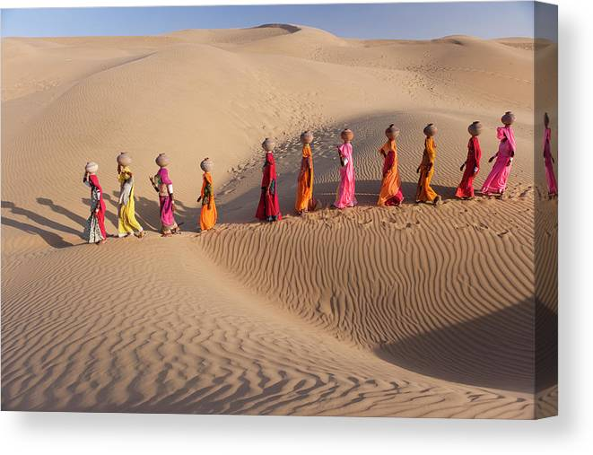 People Canvas Print featuring the photograph Women Fetching Water From The Sparse by Mint Images - Art Wolfe