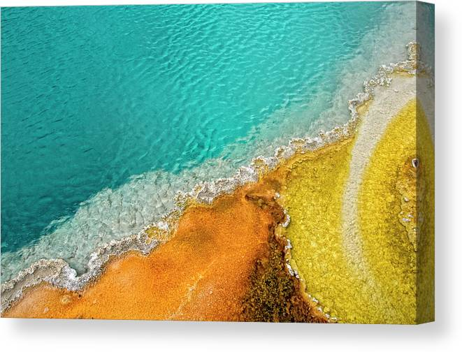 Geology Canvas Print featuring the photograph Yellowstone West Thumb Thermal Pool by Bill Wight Ca