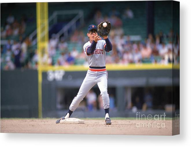 American League Baseball Canvas Print featuring the photograph Alan Trammell by Ron Vesely