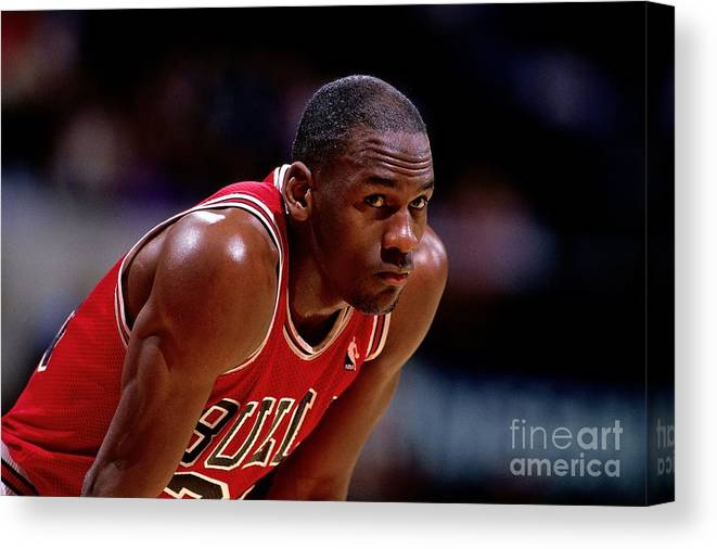 Chicago Bulls Canvas Print featuring the photograph Michael Jordan by Nba Photos