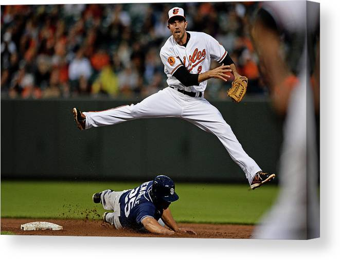 Double Play Canvas Print featuring the photograph Wills by Patrick Smith