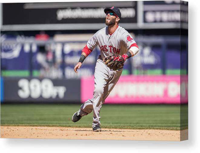 People Canvas Print featuring the photograph Dustin Pedroia by Rob Tringali