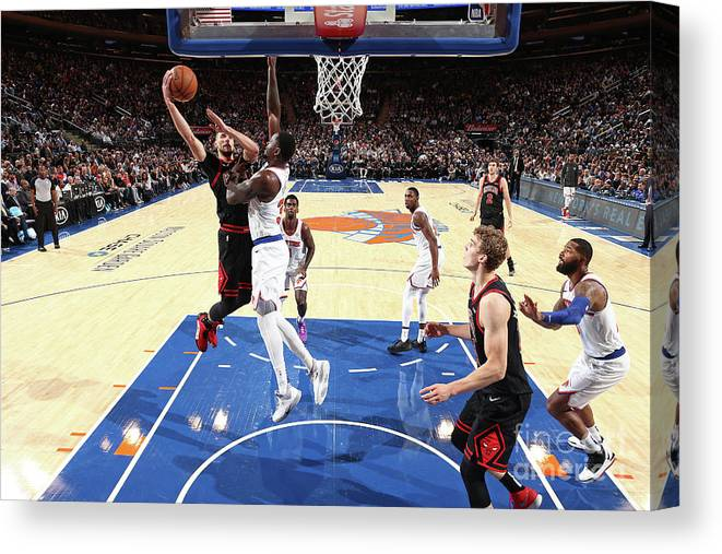 Chicago Bulls Canvas Print featuring the photograph Zach Lavine by Nathaniel S. Butler