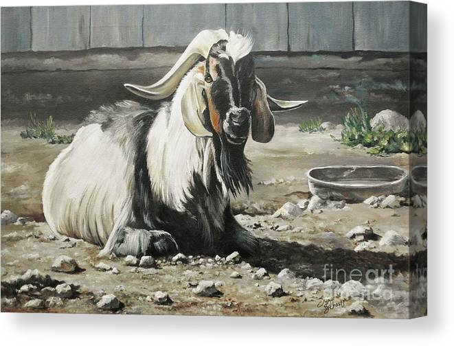 Animals Canvas Print featuring the painting Old Goat In The Barnyard by Suzanne Schaefer
