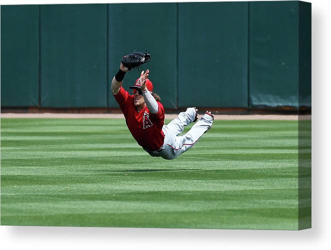 American League Baseball Canvas Print featuring the photograph Collin Cowgill by Sarah Crabill