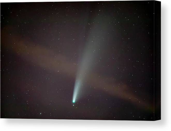 Comet Canvas Print featuring the photograph Comet Neowise by Nunzio Mannino