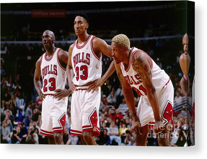Chicago Bulls Canvas Print featuring the photograph Dennis Rodman, Scottie Pippen, and Michael Jordan by Andrew D. Bernstein