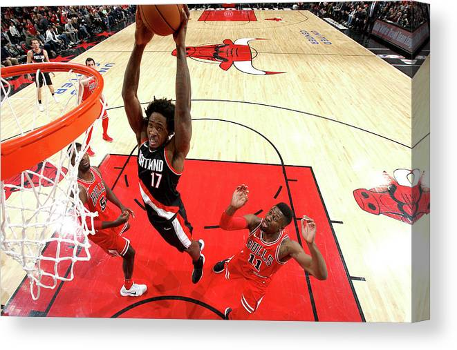 Nba Pro Basketball Canvas Print featuring the photograph Ed Davis by Gary Dineen