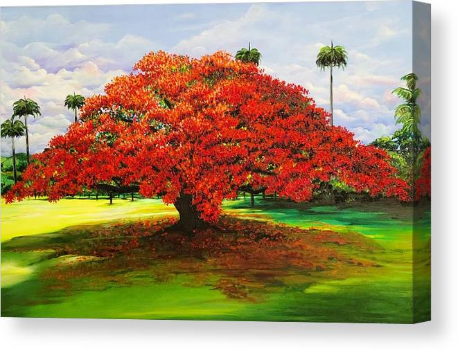 Flamboyant Tree Canvas Print featuring the painting Flamboyant Ablaze by Karin Dawn Kelshall- Best